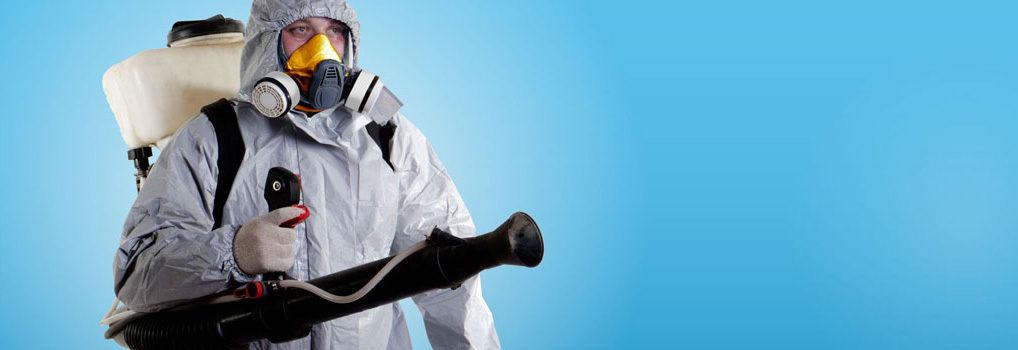 Эффективная профессиональная борьба с всевозможными паразитами и вредителями